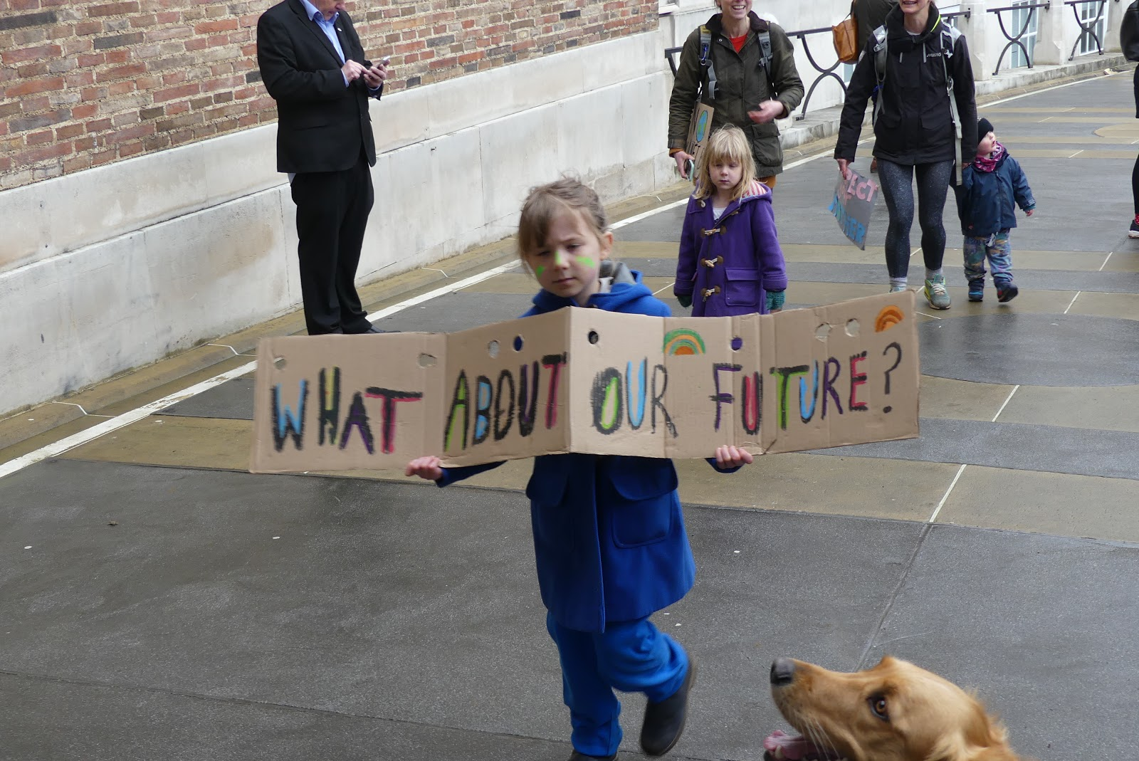 Supporting The Climate Strikes