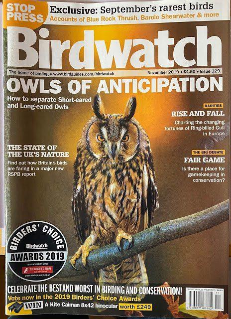 Birdwatch Magazine – Birders Choice Awards 2019
